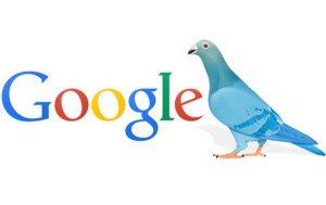 سئو سایت و الگوریتم کبوتر